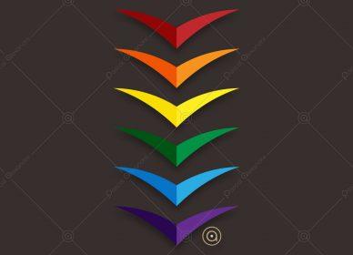 Birds Rainbow 1548359621