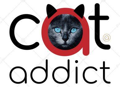 Cat Addict 1559165816