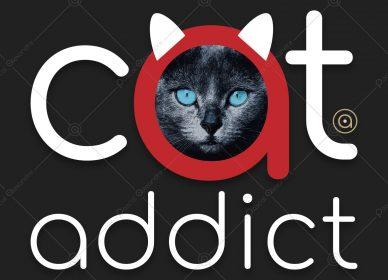 Cat Addict 1560128639_01