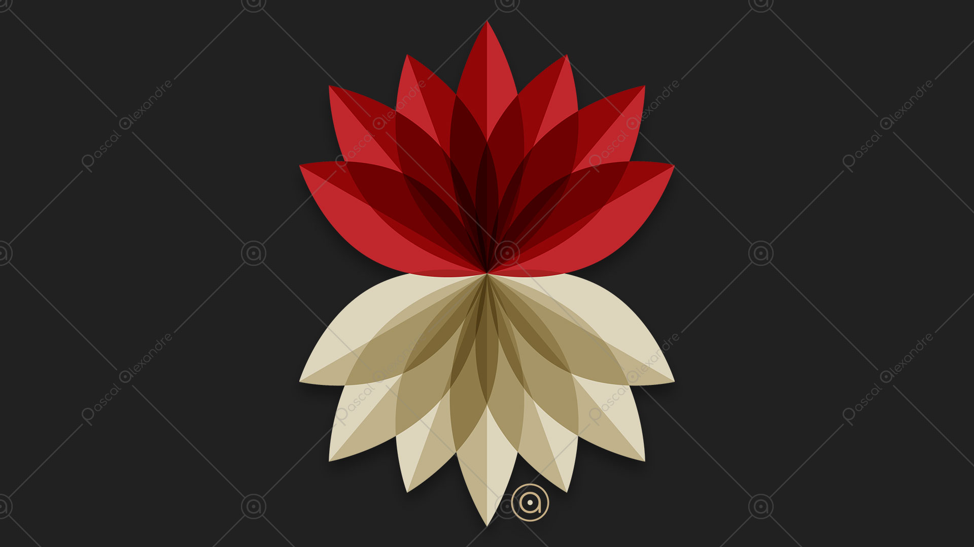 Lotus Flower 1533059905