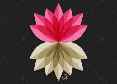 Lotus Flower 1554214555_01