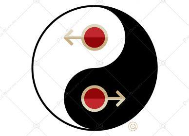 Yin Yang 1545945852