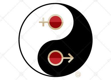 Yin Yang 1554421556